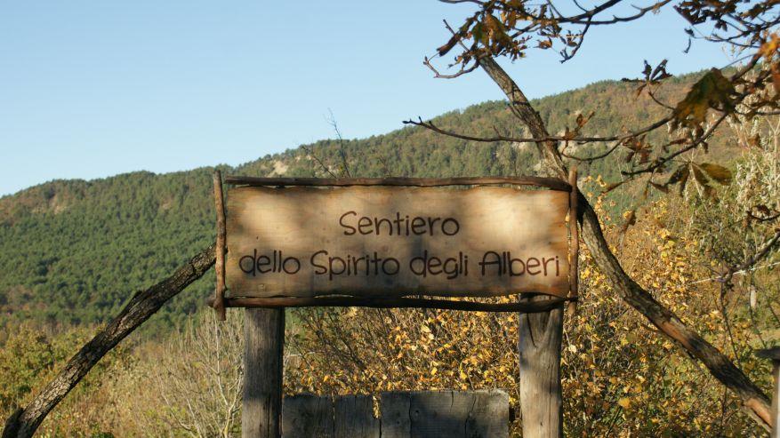 STAGIONANDO - Passeggiata sul sentiero dello Spirito degli Alberi