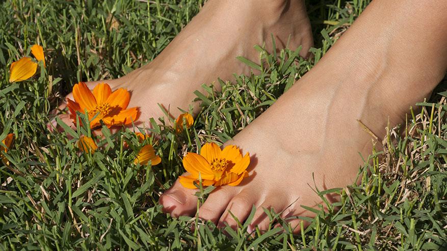 I piedi: ultima periferia ma anche prima via
