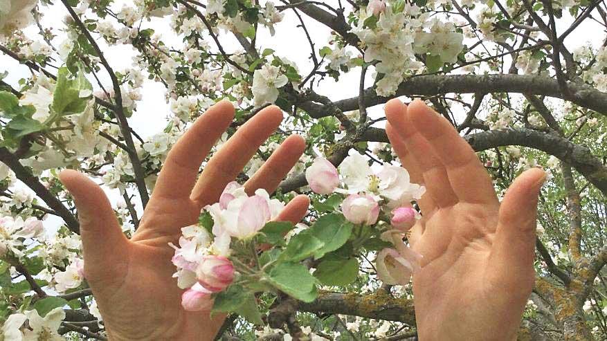 Madre Natura: vita in armonia
