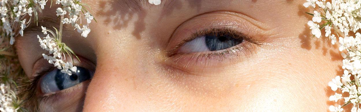 Gli occhi e la visione