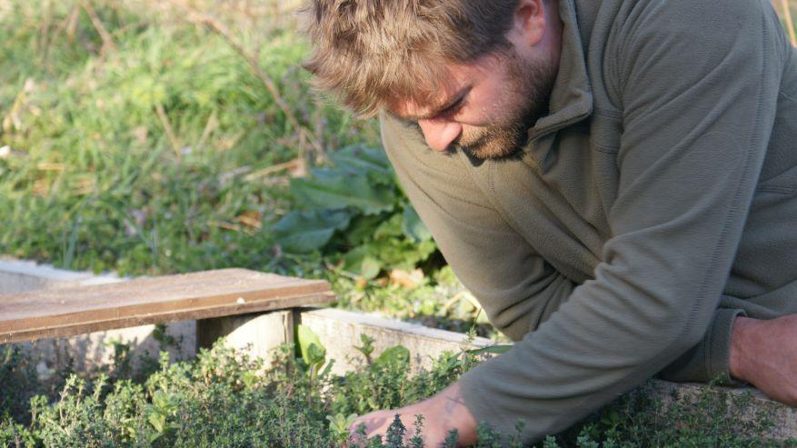 STAGIONANDO - Pratiche autunnali di agricoltura bioenergetica