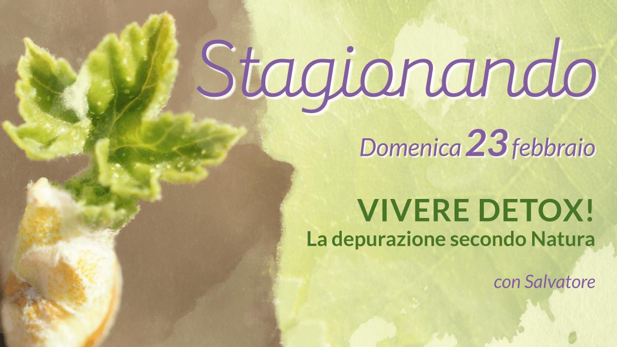 STAGIONANDO - Vivere Detox!