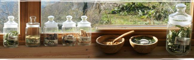 prodotti trattamenti Spirito degli Alberi