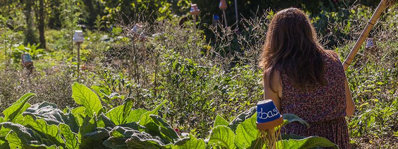 stagionando_giardino
